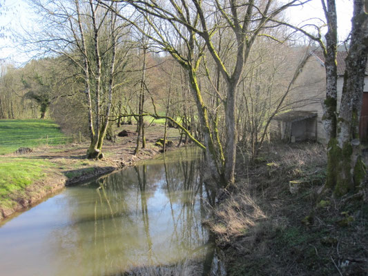 Le ruisseau de Bairon.