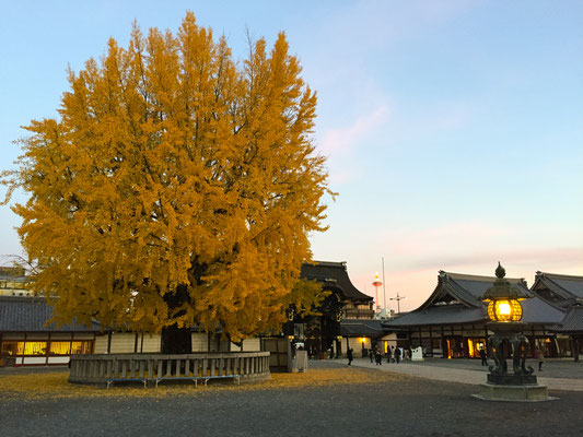 夕陽の西本願寺