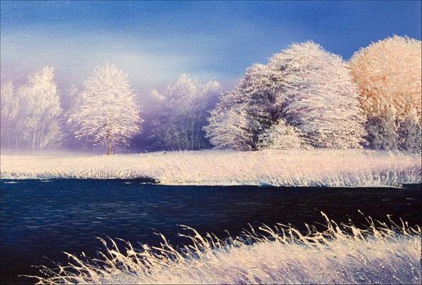 """""""Первый день зимы""""  холст/масло 40см x 60см 2007 г."""