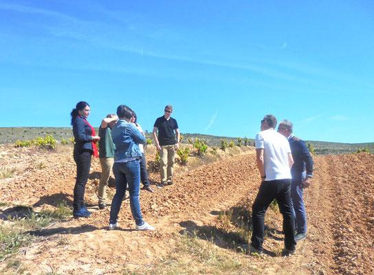 Visite sur le vignoble de Pinna Fidelis