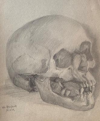 Totenkopf, Otto Eberhardt, 1949, Zeichnung, Papier, 21x29cm, ID1769