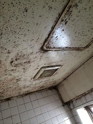 浴室天井の洗浄前|お掃除ハウス新潟【阿賀野市】