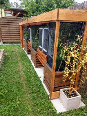 South africa outdoor terrarium