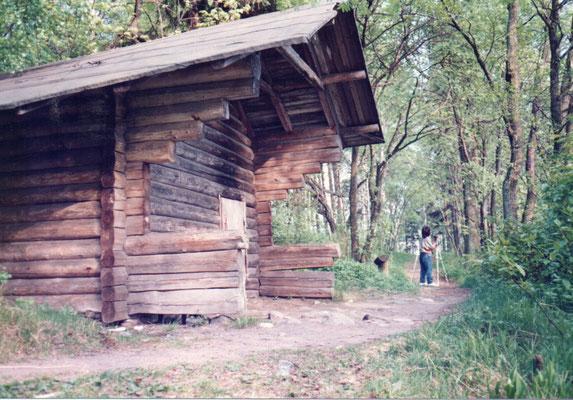 森の中のサウナ小屋 1988年夏 百瀬淳子氏撮影