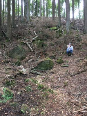 Quelle, Pfälzer-Wald, Kottelbach, Neuhöfer Tal