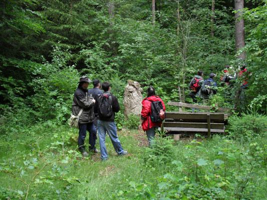 Wanderung, Mitarbeiterevent, Teamevent, Pfälzer Wald