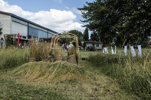 mähen 1_Ausstellungsansicht_multimedia_Größe variabel_Kunsthalle Kleinschönach_2021_Foto: Isabel Meyer