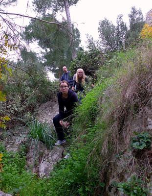 In Pylos