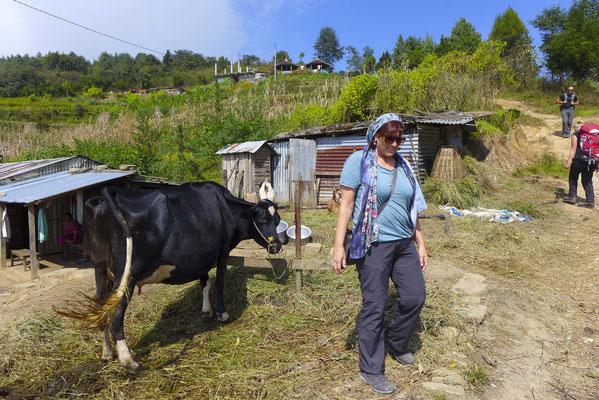 Viehhaltung in den Bergdörfern