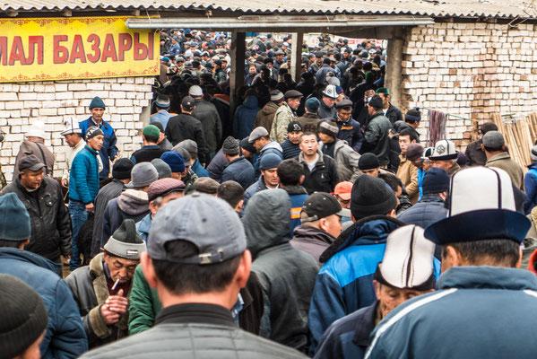 Viehmarkt in Osh