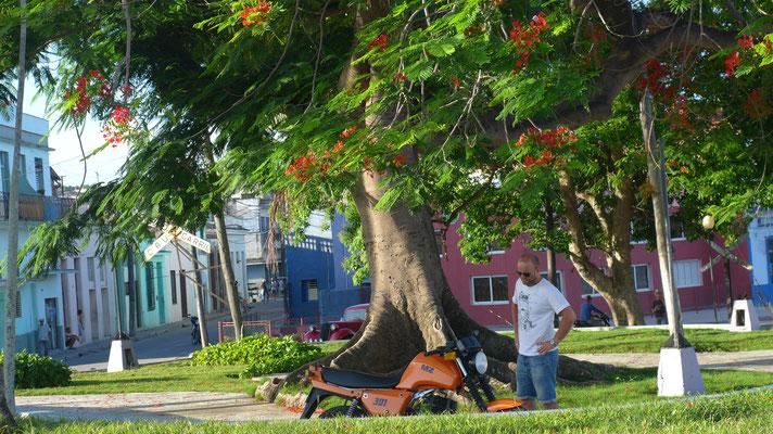 MZ, MZ, MZ.... überall schöne Ostmopeds in Kuba