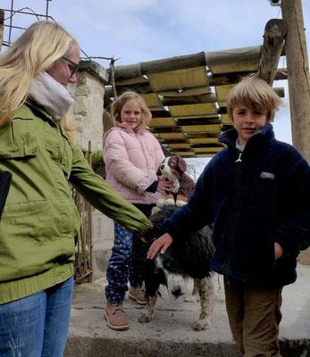 Kids lieben alle Tiere