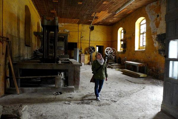 Die alte Olivenfabrik. Durch das verrostete Tor sind wir hineingeschlüpft und standen plötzlich in einer scheinbar gerade verlassenen Fabrik aus der Mitte des letzten Jahrhunderts.