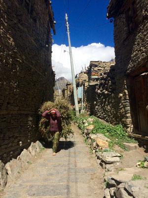 In Nepal wird alles auf dem Kopf transportiert. Harte Arbeit für alle.