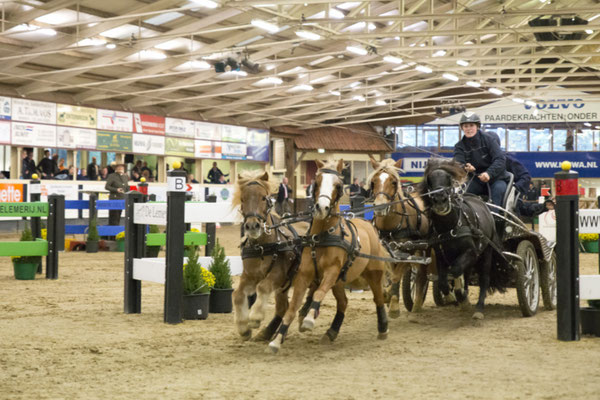 Marijke Hammink, winnares vierspan pony's. Foto Digna Meulman