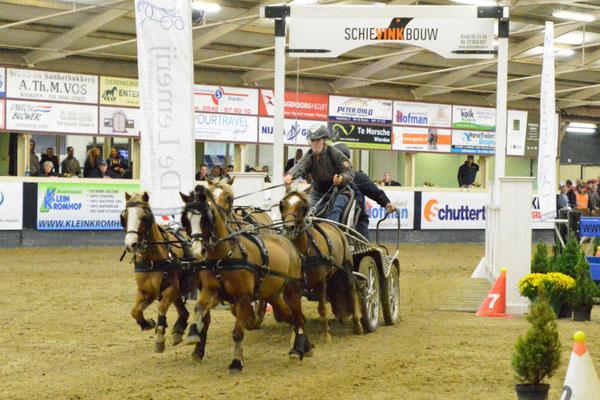 Marijke Hammink wint vierspan pony's 2017