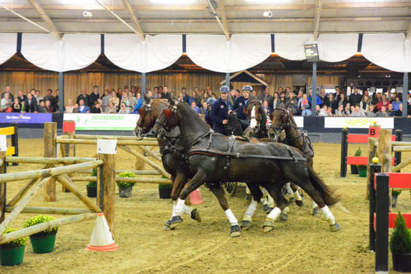 Glenn Geerts, winnaar vierspan paarden. Foto Digna Meulman