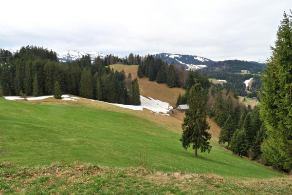 Blick Richtung Berchtoldshöhe