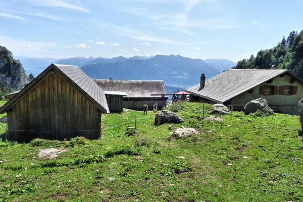 Alp Rohr 1213 m