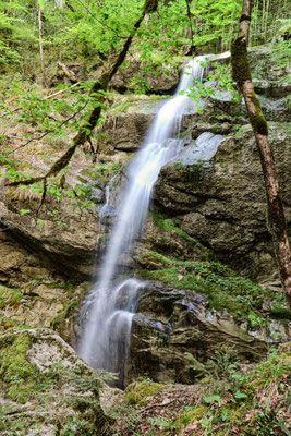 ...den Fallbach Wasserfall