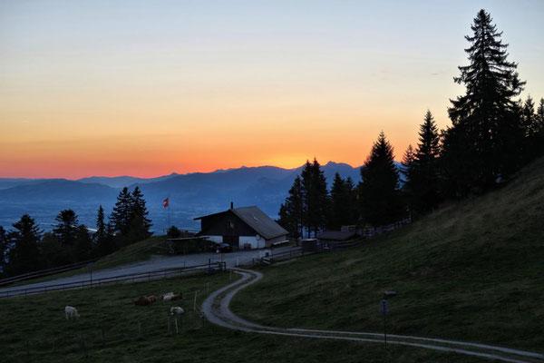 Alpe Montlinger Schwamm