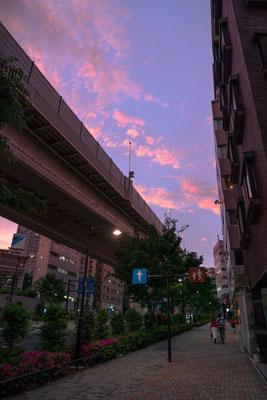 TOKYO(α9 / FE24-70 F2.8GM)