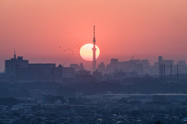 KANAGAWA (α9) 2019