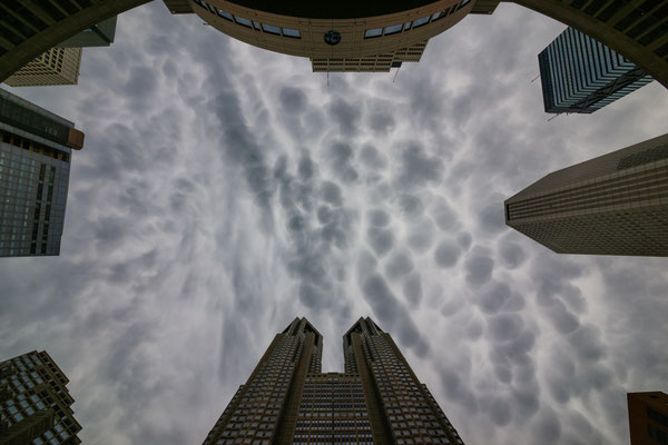 TOKYO (α900) 2013