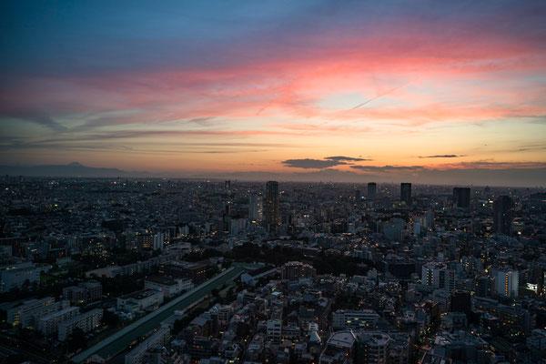 TOKYO(α9 / FE24 F1.4GM)