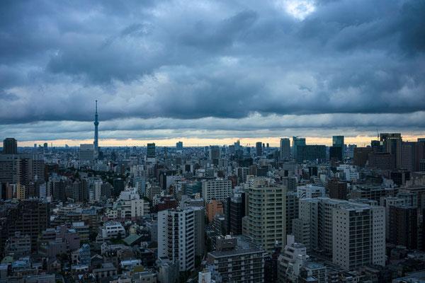 TOKYO(α9 / FE35 F2.8ZA)