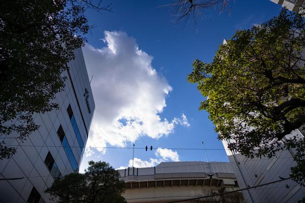 TOKYO(α7RIV / FE24 F1.4GM)