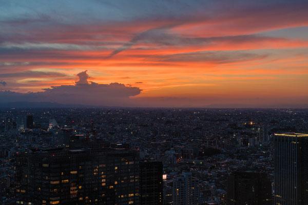 TOKYO (α7R2) 2016
