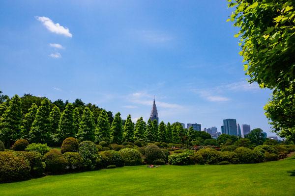TOKYO(α900 / FE24-70 F2.8ZA)