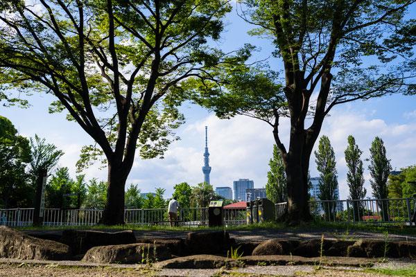 TOKYO(α1 / FE35 F1.4GM)