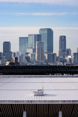TOKYO(α7RIV / FE135 F1.8GM)