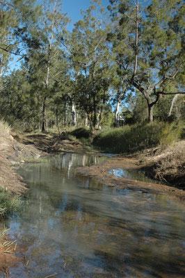 Innot Hotsprings - レーベンシューのそばにある天然温泉 川の側を掘ると温泉が湧いて出てきます