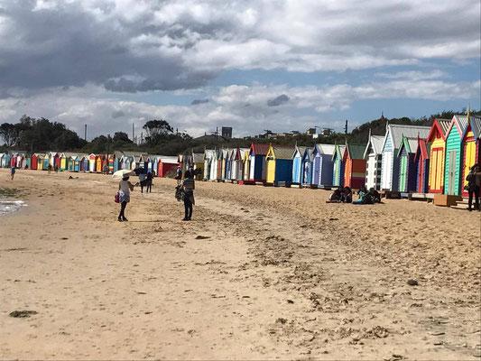 Brighton Beach - メルボルン市内から電車で20分で行くことができ、ブライトン駅を降りてすぐビーチがあります。