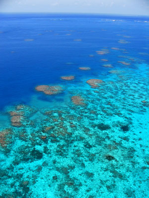 Great Barrier Reef - Moore Reef空からの眺め