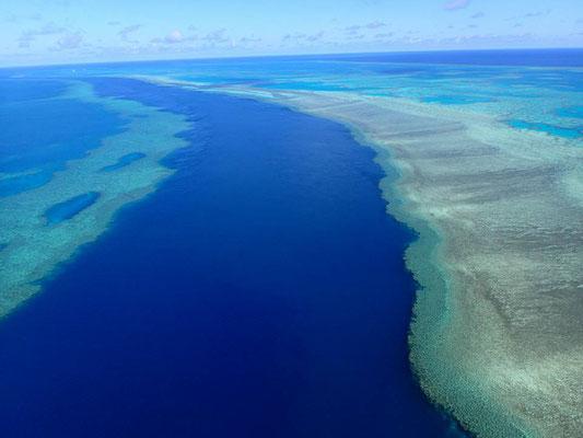 ウィットサンデー諸島沖 グレートバリアリーフ (Great Barrier Reef)