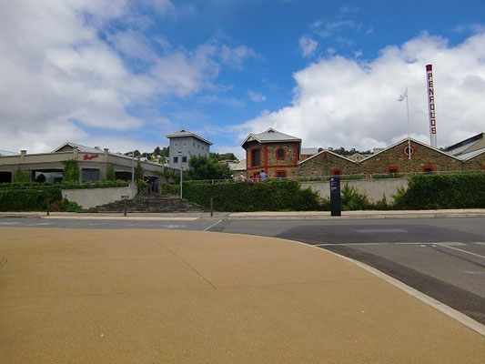 Penfolds Winery - ペンフォールズワイナリーの外観。左端に写ってる白い建物が受け付けです。
