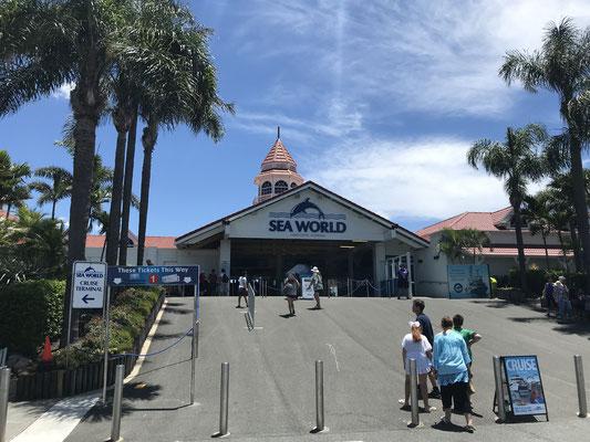Gold Coast - Sea World ゴールドコーストに住んでいる留学生・ワーキングホリデーの人たちはローカルID提示でお得な年間パスを購入することができます。