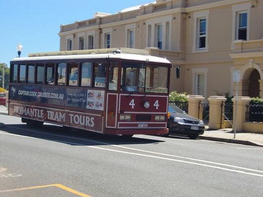 Fremantle Tram - フリーマントルには無料のバス以外にも観光客向けの有料トラムも走ってます。