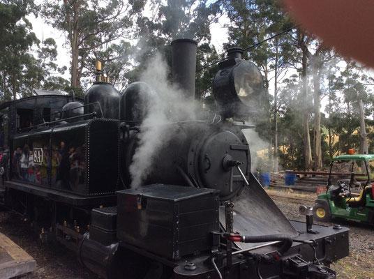 Puffing Billy Railway - パッフィング・ビリー蒸気機関車とても人気があるので要予約