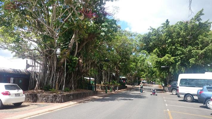 Kuranda - キュランダのメインストリート