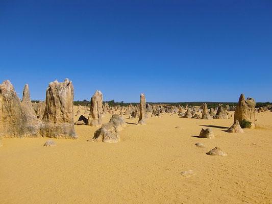 The Pinnacles - ナンブング国立公園ピナクルズ 大自然が長い歳月をかけて造りあげた砂漠の彫刻