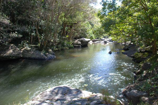 Crystal Cascades - クリスタルカスケードの川の水はとてもきれいです