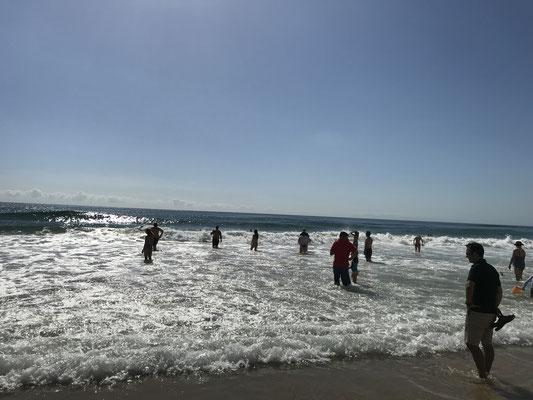 Gold Coast - Surfers Paradise 水遊びを楽しむ人たち 留学生・ワーキングホリデーの人たちがサーフィンやボディボードを楽しんでいます。