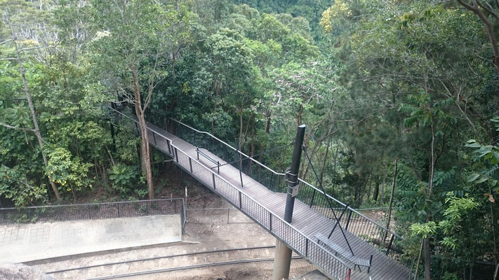 Kuranda - バロン滝に向かう遊歩道