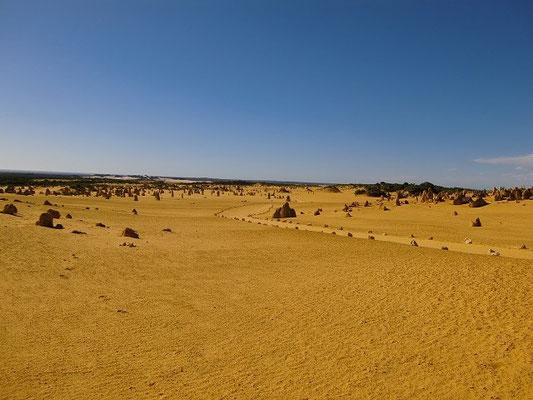 The Pinnacles - ナンブング国立公園ピナクルズ 砂漠に柱状の奇岩が立ち並ぶミステリアスな ピナクルス