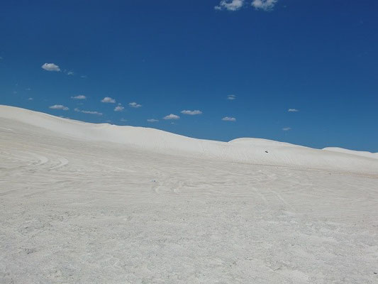 Lancelin Sand Dunes - ランセリン砂漠 砂漠と言うよりも大砂丘
